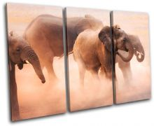 Baby Elephant Animals - 13-0978(00B)-TR32-LO